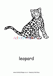 Leopard Colouring Page