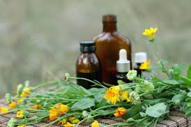 how to make marigold tincture