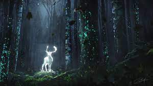 Harry Potter Forest Wallpapers - Top ...