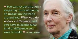 Climate Change Quotes Amazing Climate Change 48 Quote Jane Goodall On Making A Difference