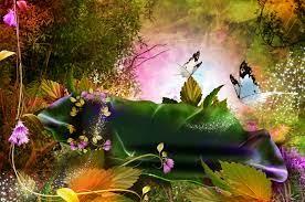 Wallpaper : 1920x1274 px, 3D, butterfly ...