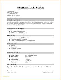 Basic Resume Format Inspiration Sample Of Simple Resume Format And How To Write A Basic Resume 48