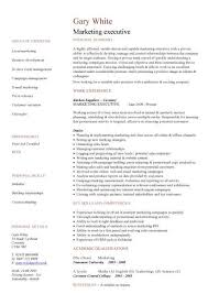 Resume Template Executive Mesmerizing Executive CV Template Resume Professional CV Executive CV Job Hunter
