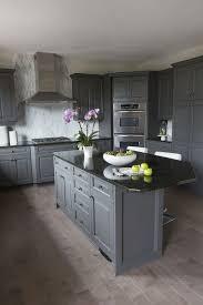 Gray Kitchen Design Ideas