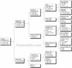 Presidents Genealogy Chart George Washington Genealogy Family Tree Pedigree