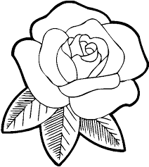 rose color sheets printable rose flower coloring pages