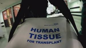 organ donation persuasive essay organ donor persuasive essays writefiction web fc com home fc