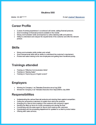 Sample Resume For Call Center Sample Resume Objectives Call Center Profesional Resume the Resume 13