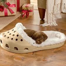 Exotic Dog Beds