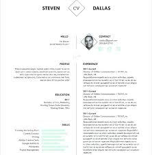 60 Unique Sample Marketing Plan Template Word – Template Free