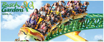 details about 2 busch gardens tampa tickets with free 41 each must read complete ad