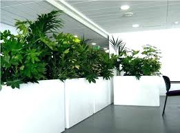 white plant pots plant pot large indoor planters large indoor plant pots planter ideas white rectangle white plant pots incredible large
