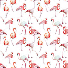 Flamingo Pattern Best Flamingo Pattern Stock Vector © ZeninaAsya 48