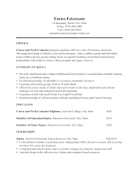 Professional Resume Examples 2020 Career Change Resume Sample