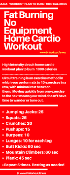 fat burning no equipment home cardio workout png