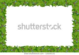 Christmas Holly Ivy Page Border Stock Photo (Edit Now) 120205135