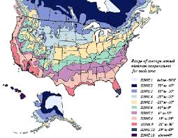 Plant Zone Chart Plant Hardiness Zone Chart And Info