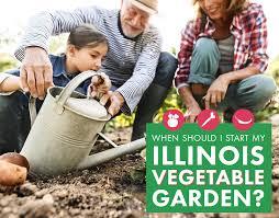 start my illinois vegetable garden