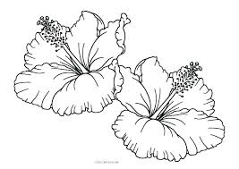 Spring Flower Coloring Pages For Toddlers Page Kid Printable Good