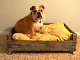bulldog bed pallet dog bed piggy pallets pet pallet dog bed old bulldog new georgia bulldog queen bedding sets