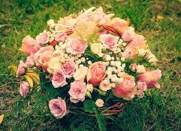 Imagini pentru flori aniversare