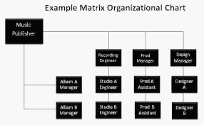example of org types of business organizational structures pingboard