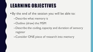 memory cognitive psychology paper learning objectives by the end  memory cognitive psychology paper 1 3 learning objectives