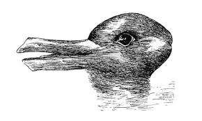 Aspect Do You See A Duck Or A Rabbit Just What Is Aspect