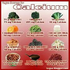 Vegan Sources For Calcium Foods With Calcium Vegan