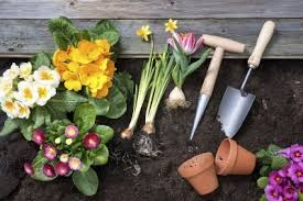 beginner gardening. Time Saving Tips For Gardeners \u2013 How To Make Gardening Easier Beginner