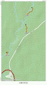 Биологический факультет Кафедра прикладной экологии Дуань  На данной трансекте нами были обнаружены следующие виды муравьев f cinerea f