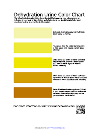 Dehydration Urine Color Chart Pdfsimpli
