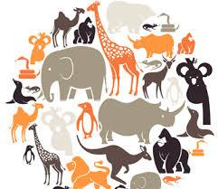 Kingdom Animalia Classifying Animals Mensa For Kids
