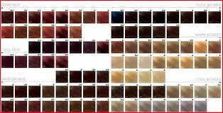 Inebrya Color Chart 2019