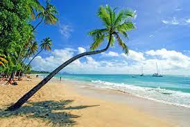 Martinique: Perle der Karibik - [GEO]