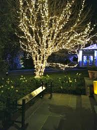 outdoor lights for trees ball best led string tree