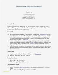 Professional Resume Examples 2013 Custom Word 28 Resume Templates 28 Best Cover Letter Resume Examples