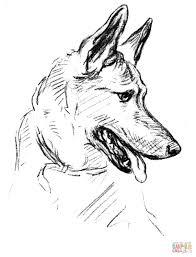 German Shepherd Dog Portrait Coloring Page