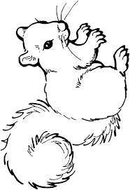 Squirrel Coloring Page Kids N Fun 13 Coloring Pages Of Squirrel ...