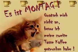 Guten Morgen Sprüche Montag 6jpg Gb Pics Gästebuchbilder