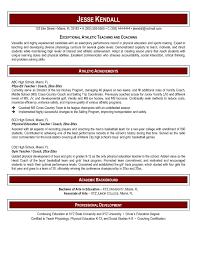 Awesome Resume Templates With References Baskanai Resume Templates