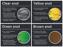 Can You Show Me The Pneumonia Phlegm Color Chart