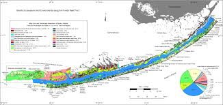 Coral Classification Chart Overview Map Benthic Ecosystems And Environments