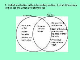 Difference Between Amphibians And Reptiles Venn Diagram Water Solutions Guide Some Similarities Between Amphibians
