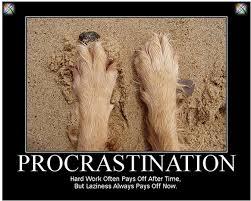 Procrastination Quotes Custom Quotes About Homework Procrastination 48 Quotes