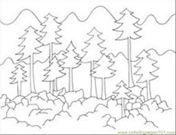Forest Coloring Pages Foresttrees Page Free 4366 Ayushseminarmahainfo