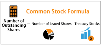 Stock Number Common Stock Formula Examples How To Calculate Common Stock