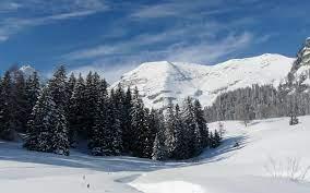 Winter Landscape Wallpaper Winter ...