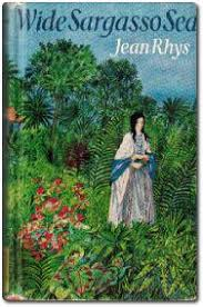 introduction wide sargasso sea study guide from crossref it info jean rhys wide sargasso sea