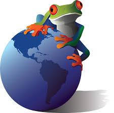Image result for craigslist frog